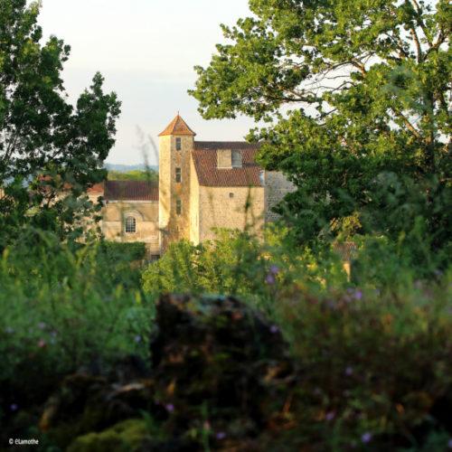 Vue sur le château de Montbron